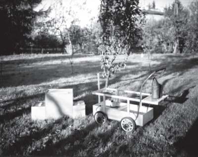 Wóz Cholewy
